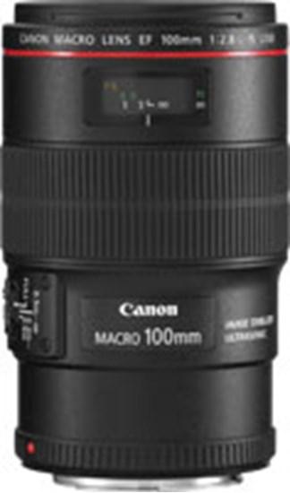 Immagine di Canon EF 100 mm f/2.8L Macro IS USM