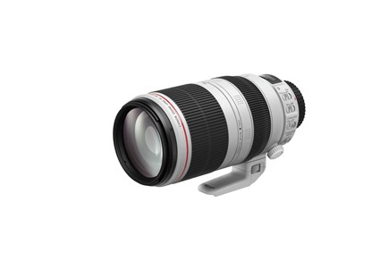 Immagine di Canon EF 100-400mm f/4.5-5.6L IS II USM