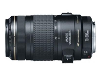 Immagine di Canon EF 70-300 f/4-5.6 IS USM