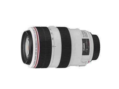 Immagine di Canon EF 70-300 mm f/4-5,6L IS USM