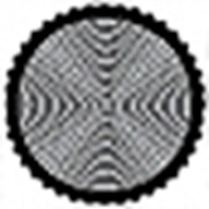 Immagine di Cokin Filtro Circolare Polarizzatore  28 mm