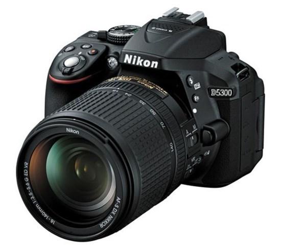 Immagine di Nikon D5300 + Nikkor 18-140 VR +  SD 8 GB 100X
