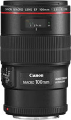 Immagine di Canon EF 100 mm f/2.8L Macro IS USM