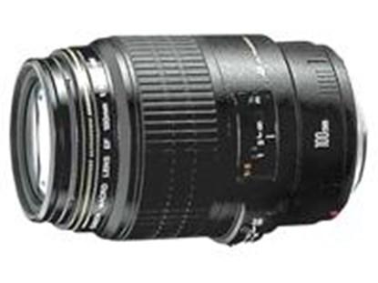 Immagine di Canon EF 100mm f/2.8 USM Macro