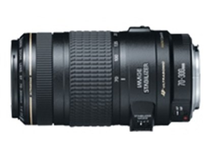 Immagine di Canon EF 70-300 f/4-5.6 IS USM