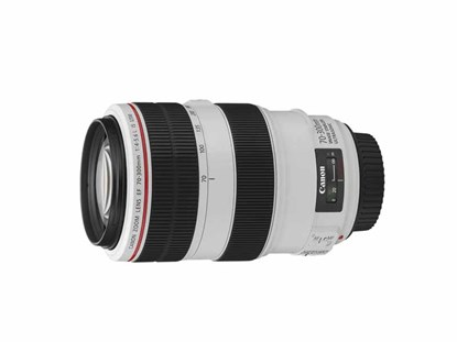 Immagine di Canon EF 70-300 mm f/4-5,6L IS USM