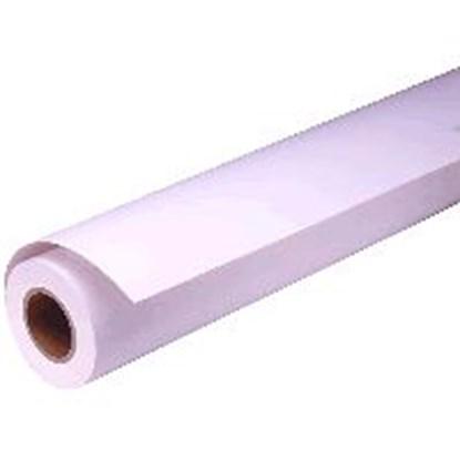 Immagine di Epson C13S041742 - Rotolo carta lucida premium