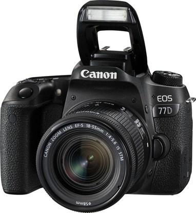 Immagine di Canon Eos 77D + EF-S 18-55 f/4-5.6 IS STM